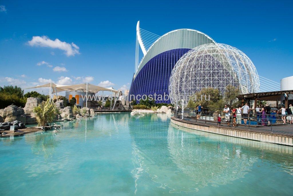 Океанариум в Валенсии, Испания, аквариум с фауной Средиземного моря.