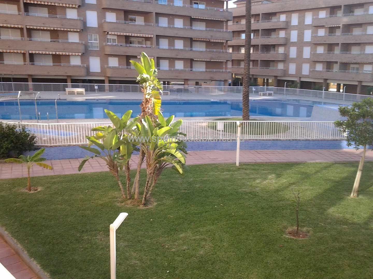 swimingpool1denia_apartments